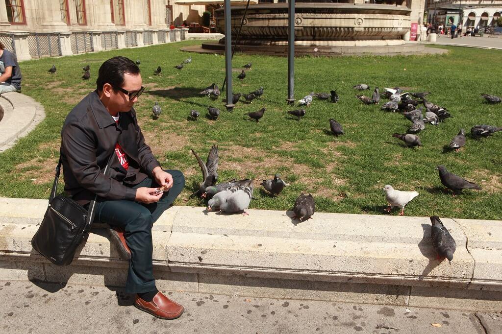 Chủ tịch Nguyễn Trung Vũ cho đàn chim bồ câu ăn