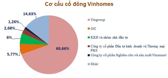Cơ cấu cổ đông CTCP Vinhomes hiện nay